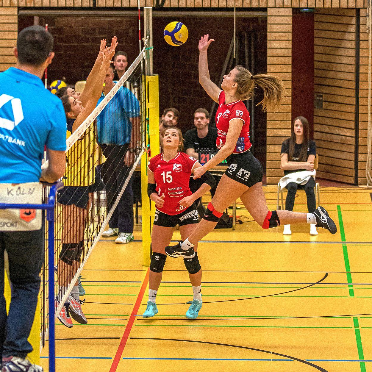 Heiß aufs Derby gegen Hildesheim – Aligses Volleyballfrauen wollen wieder punkten