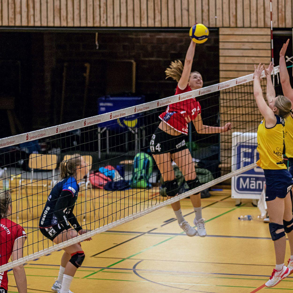 Mit neuen Schwung zurück aufs Feld – Für die Aligser Volleyballteams beginnt an diesem Wochenende wieder der Spielbetrieb