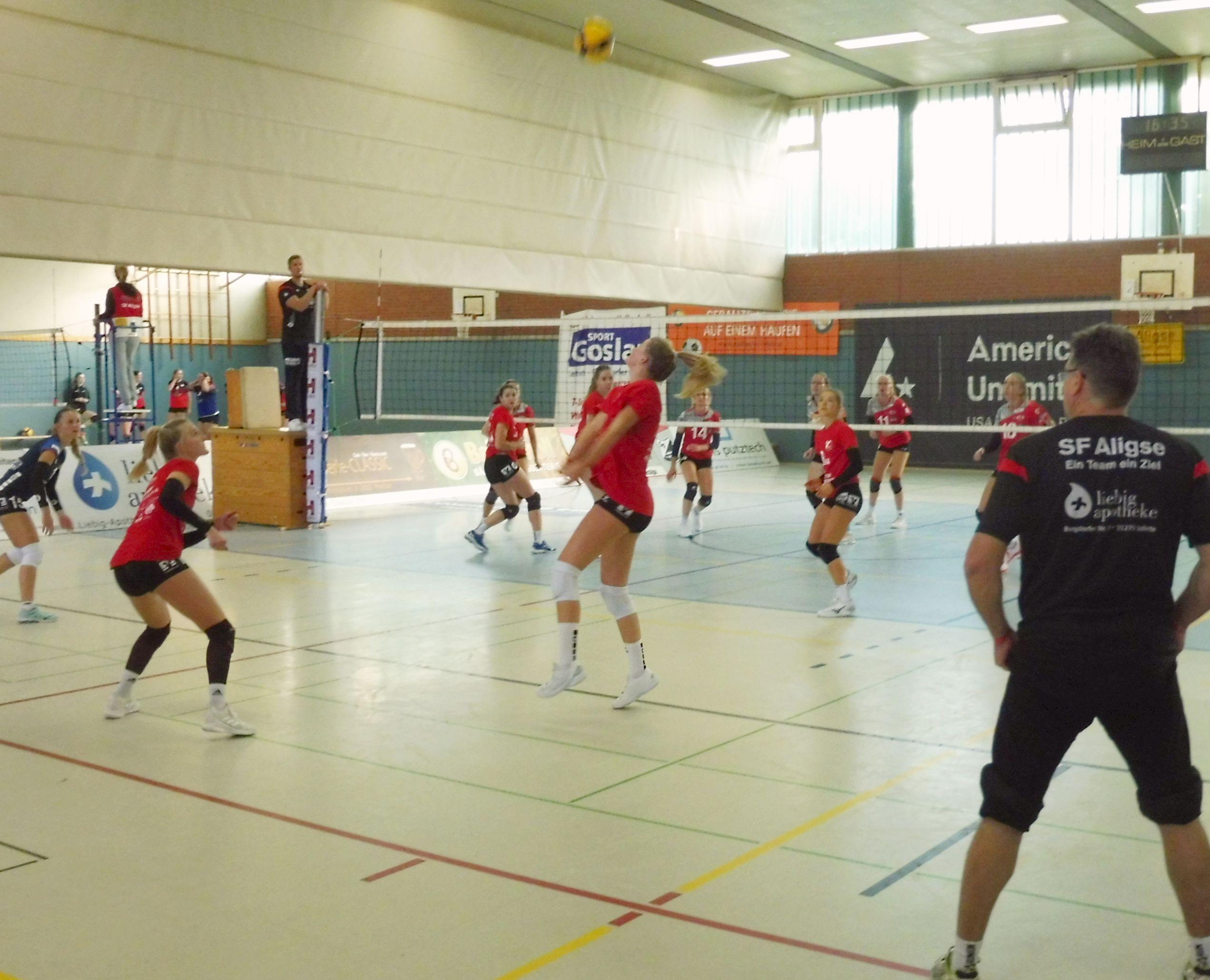 Start der dritten Liga Volleyball: Herren heute auswärts, Damen am Sonntag mit Heimspiel